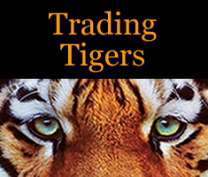 Trading Tigers Logo